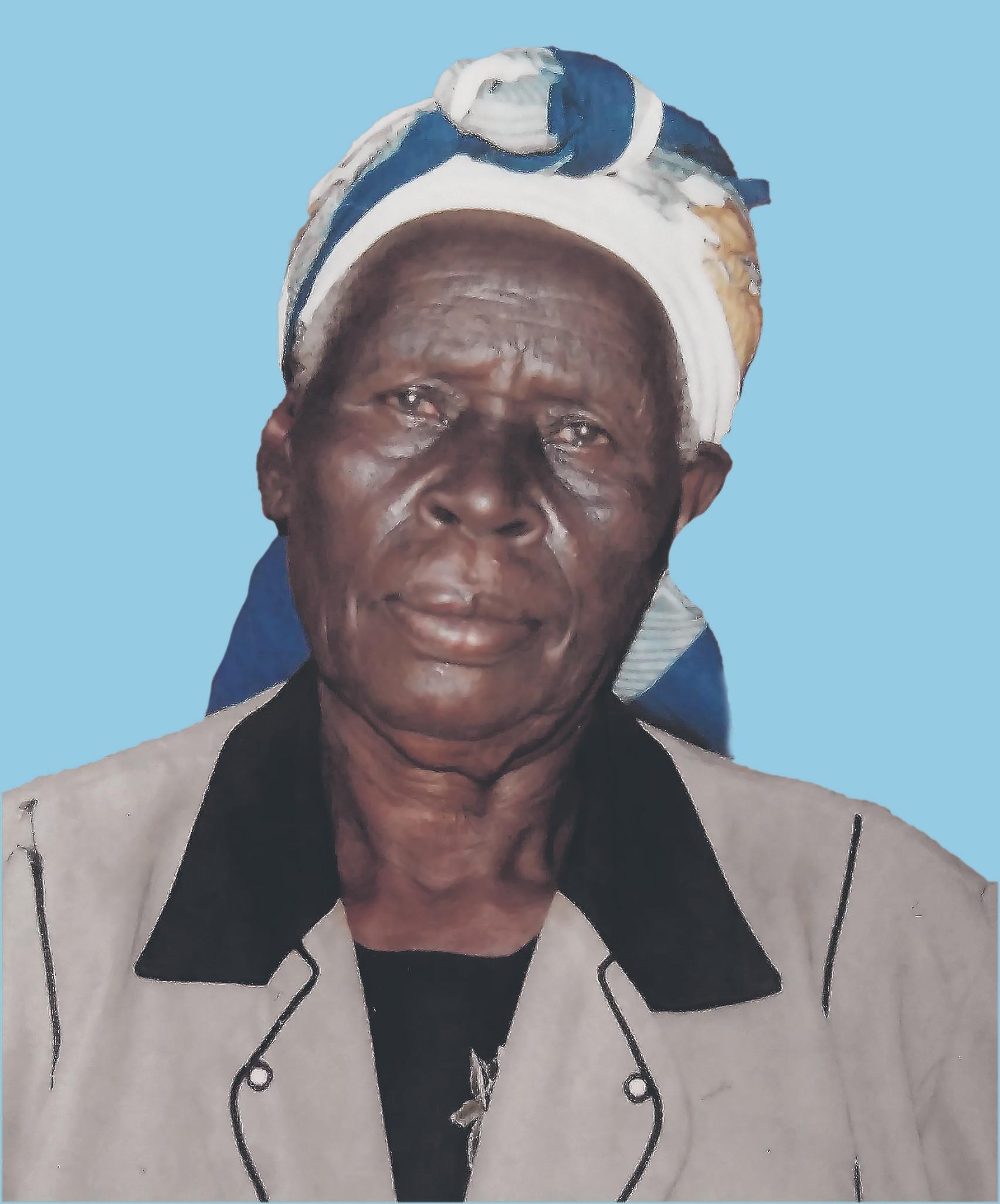 Sibia Kerubo Moegi